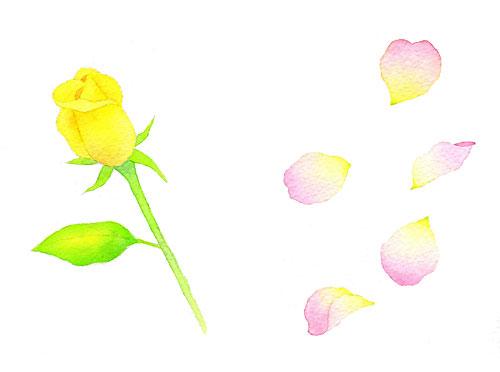 透明水彩の色の選び方。簡単な描き方