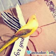 透明水彩で描いた鳥を使ってラッピング